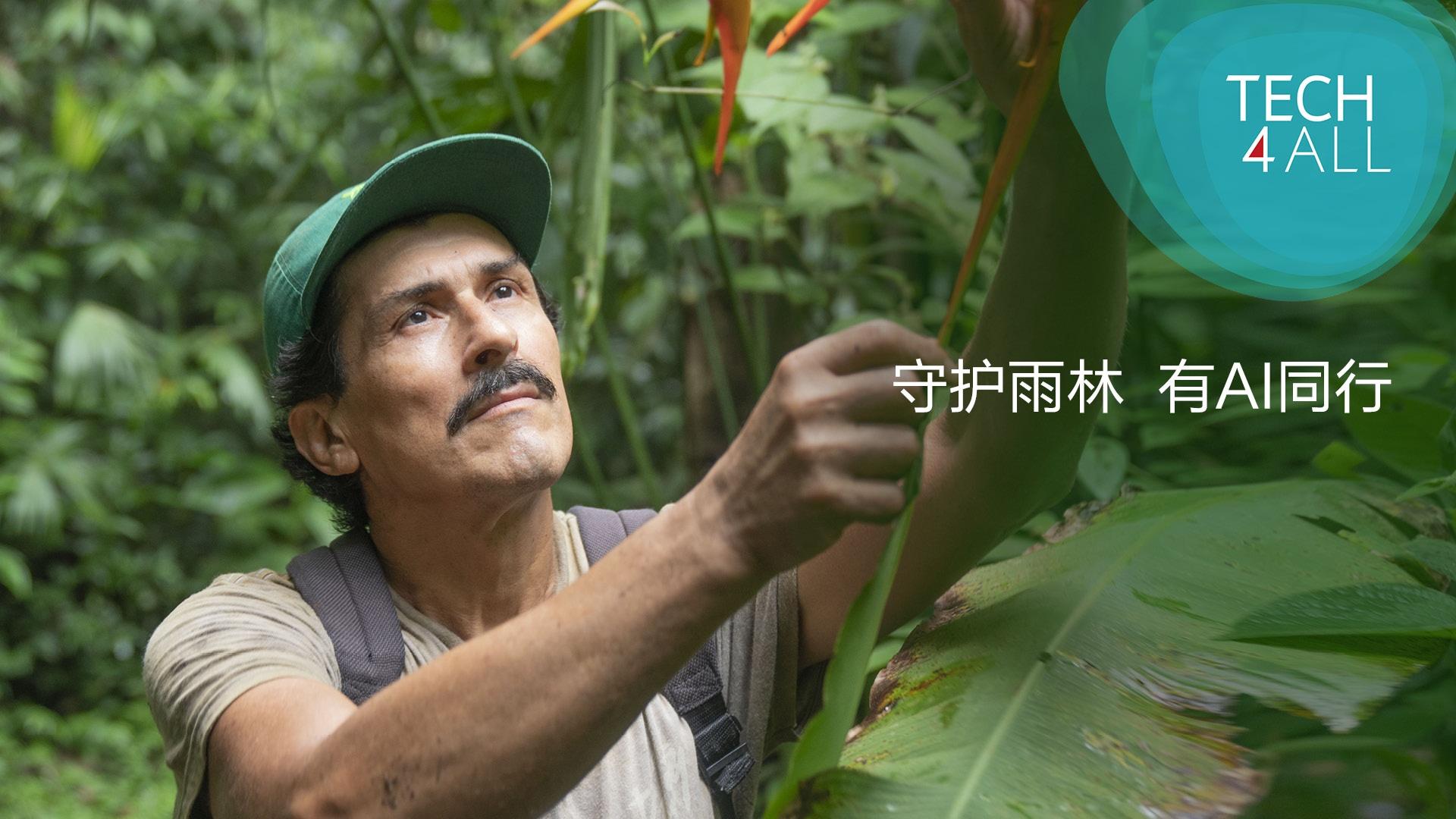 ai rainforest cv