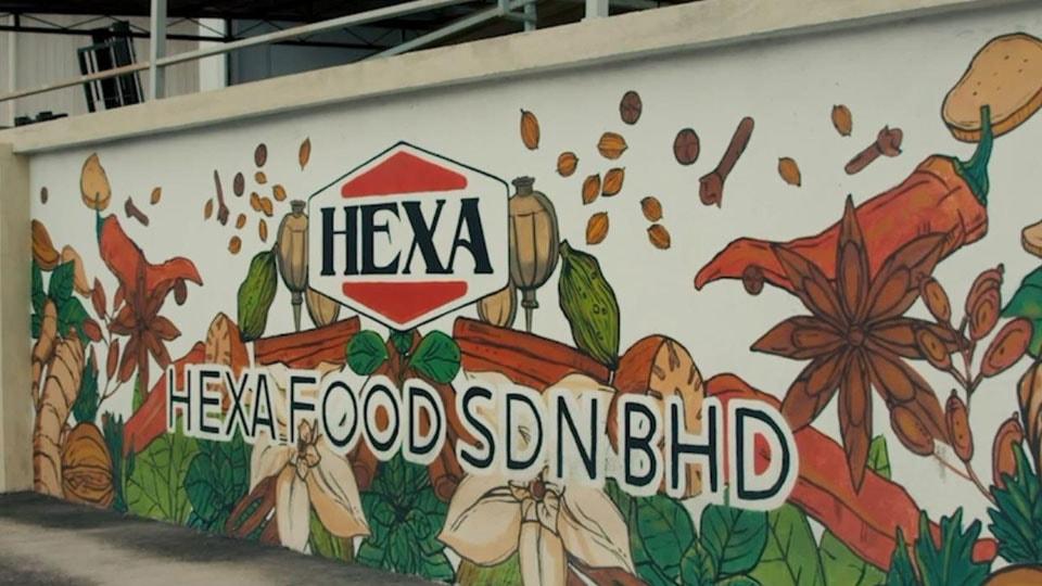 hexa story
